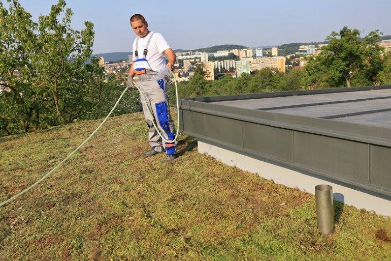 Aby se střecha zazelenala