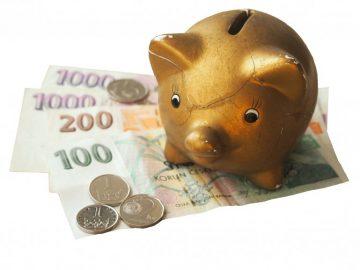 25 000 korun pro OSVČ